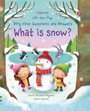 Book Cover: What is snow?