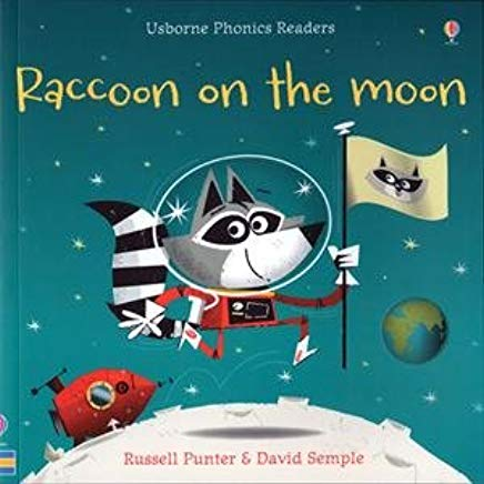 Raccoon on the moon course image